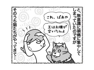 05102018_cat2.jpg