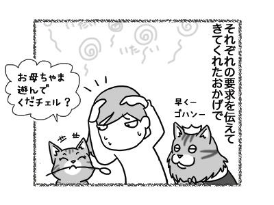 05102018_cat3.jpg