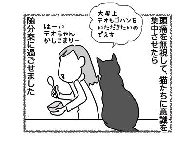 05102018_cat4.jpg