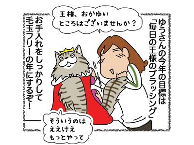 07012019_cat1.jpg