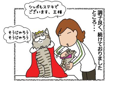 07012019_cat3.jpg