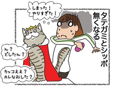 07012019_cat4.jpg