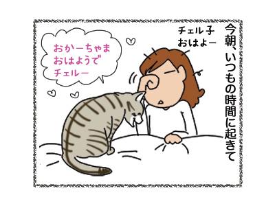 07112018_cat1.jpg