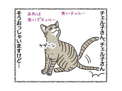08012019_cat3.jpg