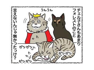 08012019_cat4.jpg