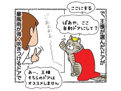 09112018_cat2.jpg