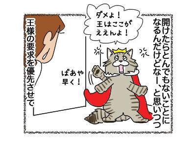 09112018_cat3.jpg