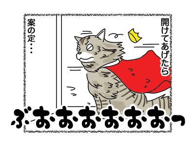 09112018_cat4.jpg