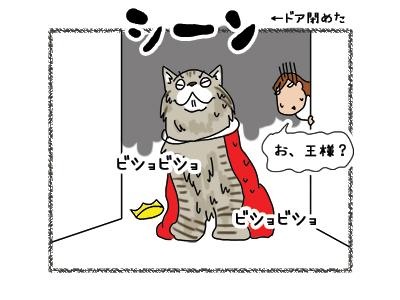 09112018_cat5.jpg