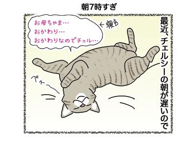 10102018_cat1.jpg