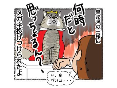 10102018_cat4.jpg