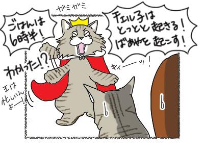 10102018_cat5.jpg