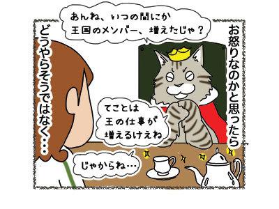 12012019_cat3.jpg