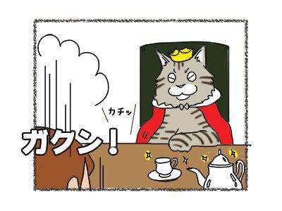 12012019_cat6.jpg
