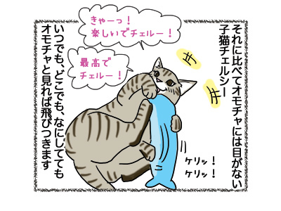 150102018_cat3.jpg