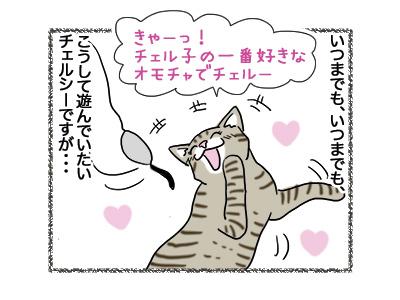 15102018_cat4.jpg