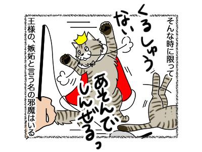15102018_cat5.jpg
