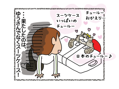 15122018_cat5.jpg