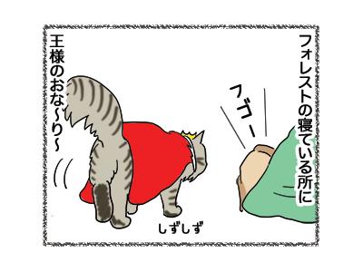 17012019_cat1.jpg
