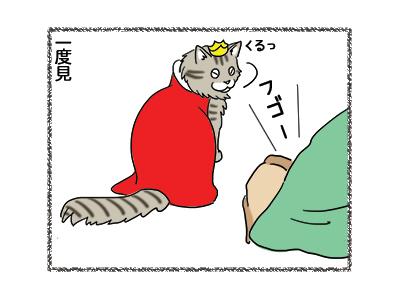 17012019_cat3.jpg