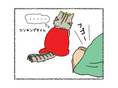 17012019_cat4.jpg