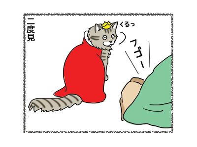 17012019_cat5.jpg