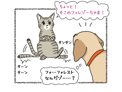 18012019_cat3.jpg