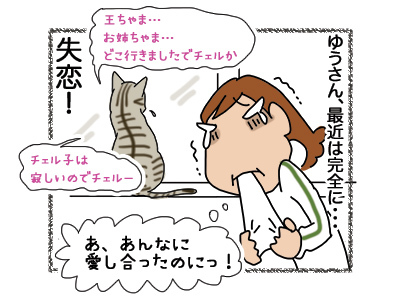 18102018_cat4.jpg