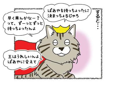 19102018_cat3.jpg