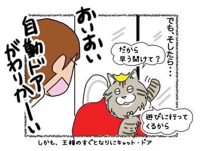 19102018_cat5B.jpg