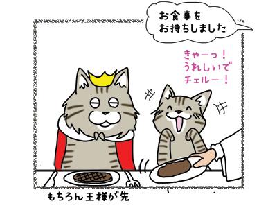 22102018_cat1.jpg