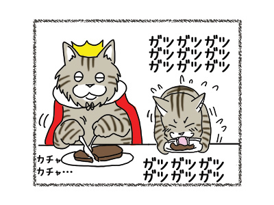 22102018_cat2.jpg