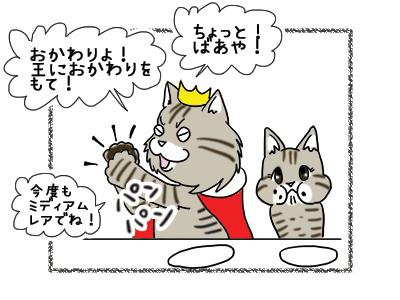 22102018_cat5.jpg