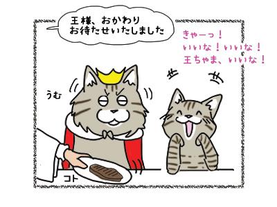 22102018_cat6.jpg