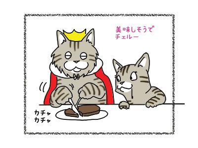 22102018_cat7.jpg
