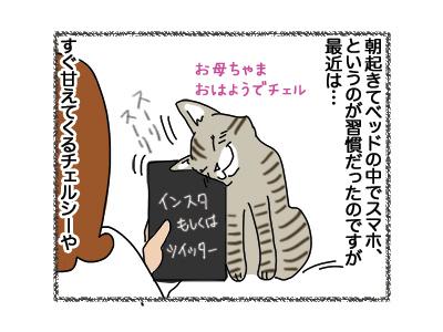 23102018_cat1.jpg