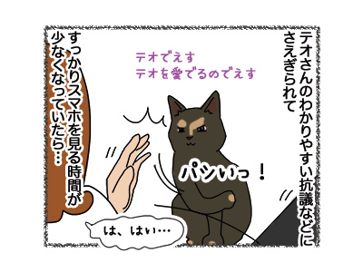 23102018_cat3.jpg
