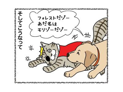 24012019_cat5.jpg