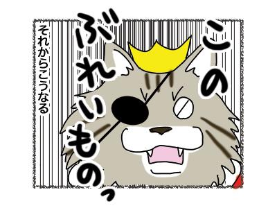 24012019_cat6.jpg