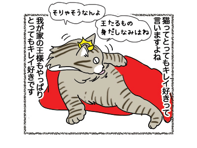 29102018_cat1.jpg