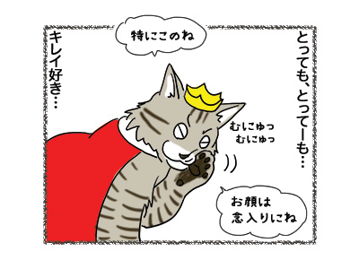 29102018_cat2.jpg