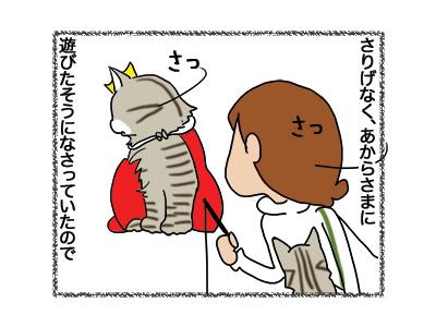 30102018_cat2.jpg