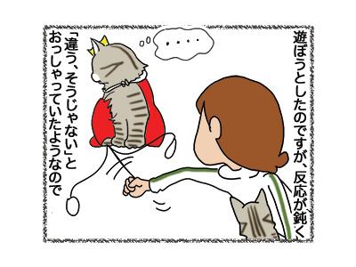 30102018_cat3.jpg
