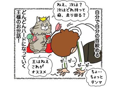 30102018_cat5.jpg