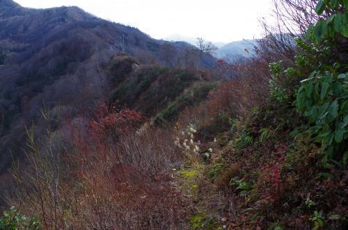 直路城主郭背後の稜線