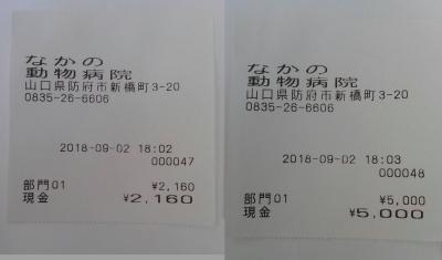 18-09-02-02-02.jpg