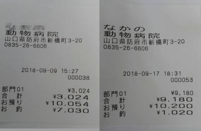 18-09-09-17.jpg