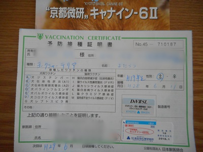 DSCN1532.jpg